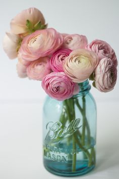 """Ranunculus: charm, attraction, and radiance. Give a bouquet of these beauties and you'll be letting the recipient know, """"I am dazzled by your charms,"""" Beautiful Flower Arrangements, Romantic Flowers, Exotic Flowers, Pink Flowers, Floral Arrangements, Beautiful Flowers, Wedding Flowers, Pink Roses, Pink Peonies"""
