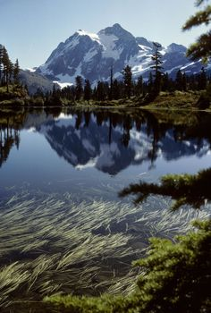 There are more than 300 glaciers in this Washington-based park that'sunderstandably known for it's wide variety of plants and animals. There are even 400 miles of trails for humans who wish to explore it by foot.