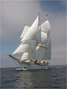 SSV Robert C. Seamans is a 134-foot steel sailing brigantine operated by the Sea Education Association (SEA) for oceanographic research and sail training.