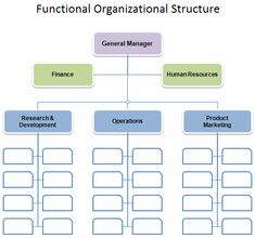 Business Organization Chart | Organizational Chart Template
