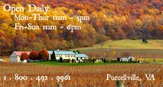 Breaux Vineyards overlooks the beautiful valley between the Blue Ridge and Short Hill Mountains. The friendly and knowledgeable staff offers tours and tastings of our flagship wines. Enjoy light gourmet fare and our internationally acclaimed wines by the stone fireplace in our tasting room or on Patio Madeleine overlooking our lavishly landscaped estate with spectacular views.