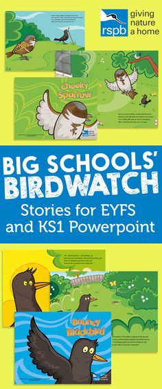 Big Schools' Birdwatch - Stories for EYFS and KS1
