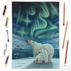 """""""Under The Same Stars - Polar Bear""""  Collaboration with @colors_of_the_wild  This is the first of three drawings of our """"Under The Same Stars"""" series . We did a time lapse video of this, check it out if you haven't seen it yet! DM or mail me if you are interested in the original or a limited edition print.  _______________ What was used: Toison D'Or soft pastels, Faber-Castell Pitt pastel pencils, Prismacolor pencils on black paper"""