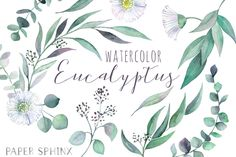 Watercolor Eucalyptus Clipart | Greenery Clipart - Flowers, Leaves, Branches and Stems - Wedding Invitation Clip Art - Instant Download PNGs by PaperSphinx on Etsy https://www.etsy.com/listing/498353780/watercolor-eucalyptus-clipart-greenery