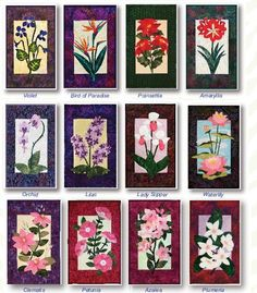 Floral Collection 3 floral appliqué quilt patterns by Debra Gabel of www.ZebraPatterns. #quilts #applique