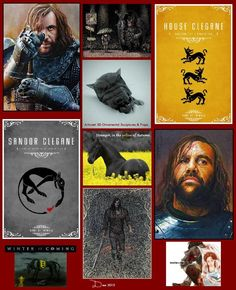 Rory McCann- The Hound.  After Arya he is my favorite character.