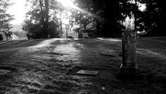 Text and Pixel Reflections: Renton, WA | Mt. Olivet Cemetery [2015]