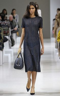 Nina Ricci Fall/Winter 2015 Trunkshow Look 11 on Moda Operandi