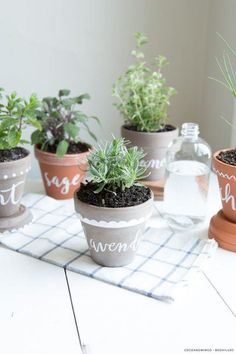 Organizzare le erbe aromatiche in casa: vasi dipinti - #DIY #herbs #organize #homeideas