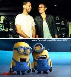 Yah this is pretty accurate! Haha too cute - Linkin Park
