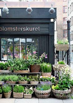 Я Флорист !!!!! | VK