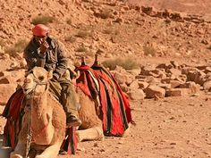 Petra, The Rose City Rose City, Petra, Camel, Places To Go, Spaces, Nature, Animals, Animales, Animaux