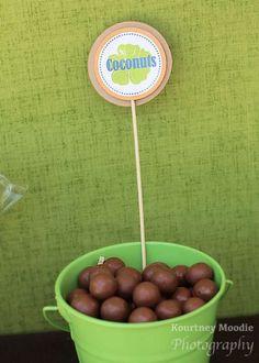 Chocolate Coconuts f