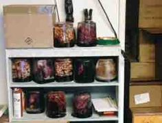 Brains! Brains! Have you ever won the coveted brain case at Gen Con?
