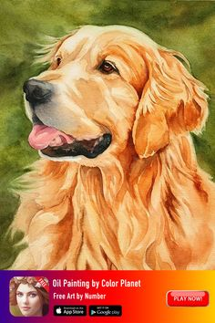 You can create your own paintings. Download Oil Painting App, try it for free now! #oilpainting #oilpaintingapp #artpainting #oilpaintingartwork #colorbunumber Easy Watercolor, Watercolor Animals, Watercolor Paintings, Dog Canvas Painting, Watercolour, Golden Retriever Kunst, Animal Paintings, Animal Drawings, Benfica Wallpaper