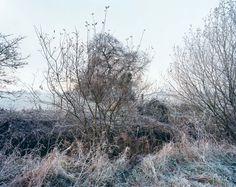 Jem Southam The River Winter   Le Journal de la Photographie