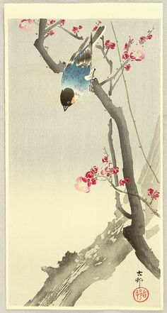 Finch with plum blossom by Ohara Koson