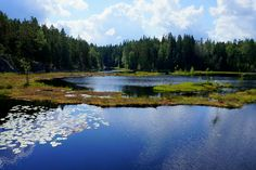 Visiting Nuuksio National Park in the summertime. The scenery is stunning!  http://thatbackpacker.com/2014/08/15/nuuksio-national-park-finland-every-mans-right/  #nuuksio #nationalpark #outdoors #nature #outdoorsfinland #hiking