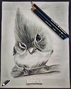Bird Pencil Drawing, Color Pencil Sketch, Bird Sketch, Pretty Drawings, Cool Drawings, Neo Trad Tattoo, Graphite Drawings, Art Academy, Watercolor Bird