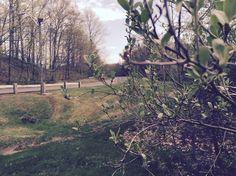 Sage Park.