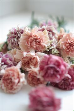 Beautiful shades of pink and mauve. Ruffled frilly petals add a gorgeous vintage vibe to wedding bouquets and floral arrangements Carnation Colors, Carnation Bouquet, Pink Carnations, Carnation Wedding, Bunch Of Flowers, Types Of Flowers, Wedding Bouquets, Wedding Flowers, Bloom Baby