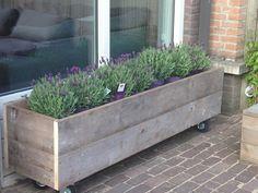 Planter on wheels Café Exterior, Cottage Exterior, Exterior Paint, Outdoor Plants, Outdoor Gardens, Outdoor Decor, Outdoor Restaurant Patio, Outdoor Shelters, Balcony Flowers