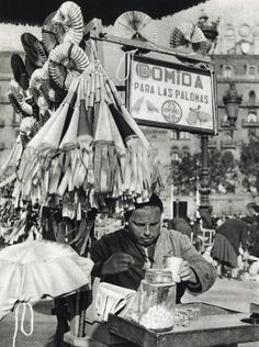 Food for pigeons, Barcelona, Old Pictures, Old Photos, Vintage Photos, Barcelona City, Barcelona Catalonia, Before Us, Retro, The Past, Old Things