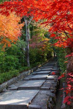 Kodai-ji Temple, Kyoto, Japan