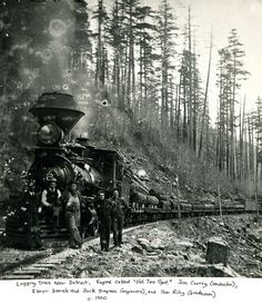 Logging Train near Detroit, Ore. c. 1900 by OSU Special Collections