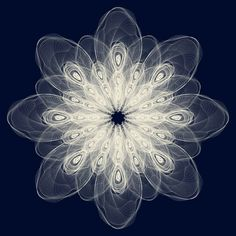 Eery Elegance: Mandala: The Circular Symbol of Wholeness Design Graphique, Flower Of Life, Mandala Art, Flower Mandala, Art Plastique, Fractal Art, Sacred Geometry, Geometry Art, Art Photography