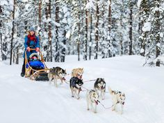 HolidayMe_Top 10 Countries To Visit In 2017_Finland_485464570.jpg