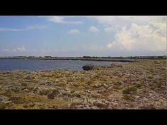 Salento (Torre Inserraglio) - YouTube