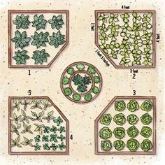Grow Your Own Edible Garden - Create your own fall vegetable bounty with this easy step-by-step guide for building raised beds and choosing the right seeds. #food #gardening #yard