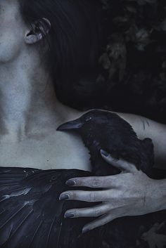 "Power-Full Photo & Words: ""Let my heart be still a moment and this mystery explore ... "" Edgar Allan Poe, The Raven"