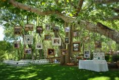 Picture display of couple in place of traditional slideshow.