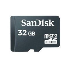 SanDisk 32GB microSDHC Memory Card (Bulk Package) by SanDisk, http://www.amazon.com/dp/B003WGJYCY/ref=cm_sw_r_pi_dp_tlplrb0T3D62C