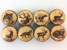 Set of 8 vintage woodland animal drawer knobs.These knobs are wide and have been stained English Chestnut with a decoupage woodland animal pattern. Cupboard Knobs, Drawer Knobs, Drawer Pulls, Kitchen Decor Sets, Furniture Knobs, Wood Drawers, Lodge Decor, Woodland Animals, Wood Print
