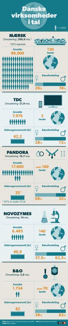 GRAFIK Hvem arbejder der, og hvor gamle er de? Sådan står det til i danske virksomheder | Nyheder | DR