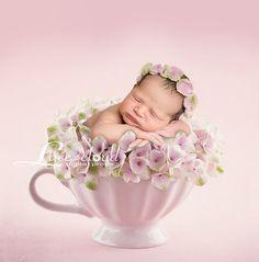 Newborn digital background / digital newborn backdrop /pink
