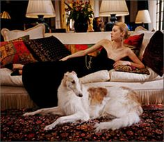 Ralph Lauren Ralph Lauren Home La Boheme Collection Traditional Formal Sophisticated Classic French City Style