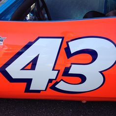 Richard Petty  #43