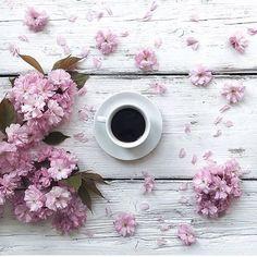 Sweet Pink Flowers with Nice, Hot Coffee 🌸☕🌸 Coffee Cafe, Hot Coffee, Coffee Break, Morning Coffee, Coffee Aroma, Coffee Shops, Flat Lay Photography, Coffee Photography, Coffee Flower