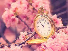 reloj de rosa de animes - Buscar con Google