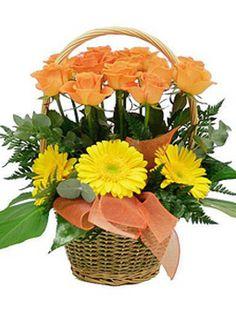 Fiori Online.9 Best Invio Fiori Online Images Bunch Of Red Roses Flower