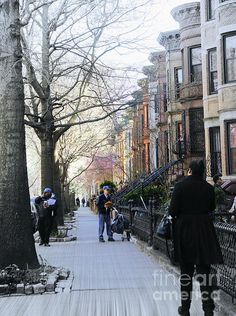 Morning in Park Slope Brooklyn by Lilliana Mendez
