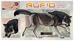 More art, yay! This time for my boyfriend's new character, Rufio. He's the dominant male in Ducky's pack and is the only wolf she'll be submissive towards. Even though Rufio's the boss, Ducky still. Wolf Name, Warrior Cat Drawings, Dog Art, Werewolf, Animal Drawings, Photo Art, Deviantart, Cats, Animals