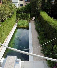 La Piscine Naturelle Dans Le Jardin