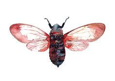 Cicada Watercolor Illustration Print Handmade Decoration Red Blue Purple Nature. $25.00, via Etsy.
