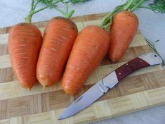 Kořenová zelenina je součástí našeho jídelníčku, vysévá se zrovna teď. Korn, Carrots, Vegetables, Carrot, Vegetable Recipes