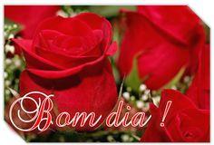 Vermelhas e Lindas  Bom dia!